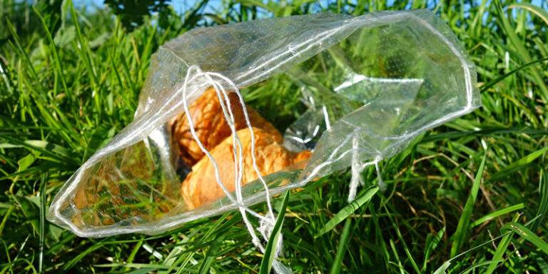 Pros and Cons of Biodegradable Bags